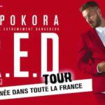 Matt Pokora annule plusieurs concerts
