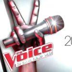 Ce soir à la télé : demi-finale de The Voice 5 (VIDEO)