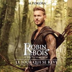 Matt Pokora : le 1er single de Robin des Bois