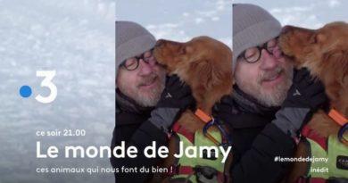 """Ce soir sur France 3 """"Le monde de Jamy"""", ces animaux qui nous font du bien (vidéo)"""