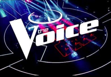 The Vivi écarté de « The Voice » après des tweets racistes et homophobes