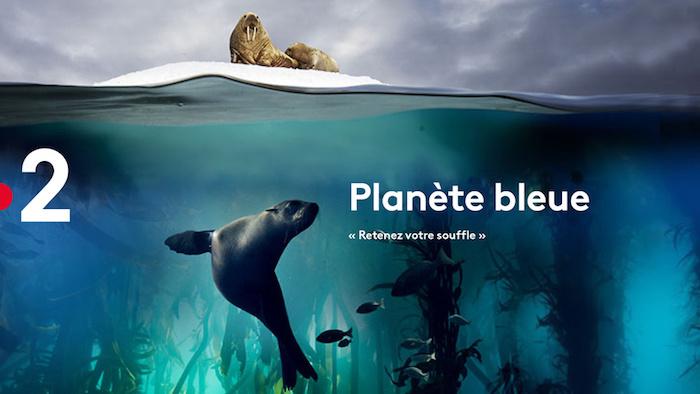 « Planète bleue  : au coeur des océans »