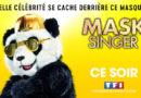 « Mask Singer » du 6 décembre : ce soir c'est la demi-finale ! (+ récap des indices)