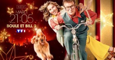 """Ce soir sur TF1, passez le réveillon de Noël avec """"Boule et Bill 2"""" (VIDEO)"""