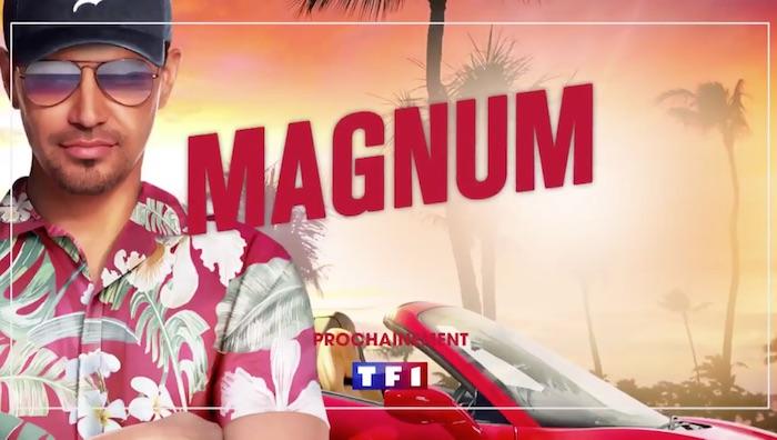 LE GRAND FOURRE-TOUT - Page 24 Magnum-TF1