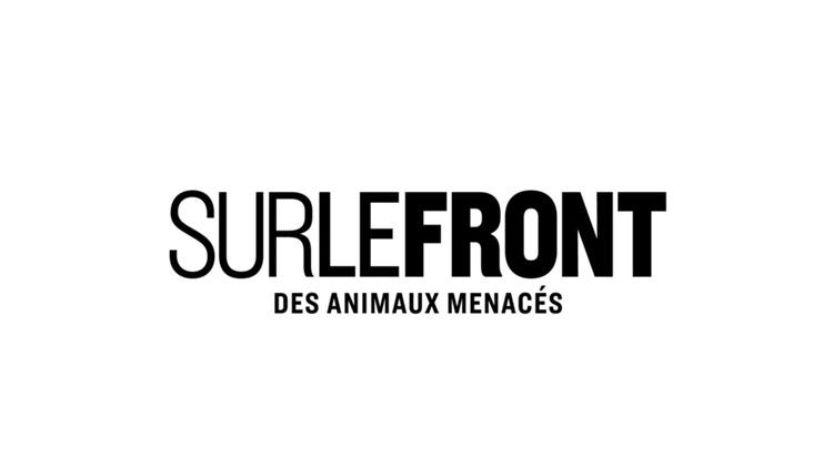 « Sur le front des animaux menacés »