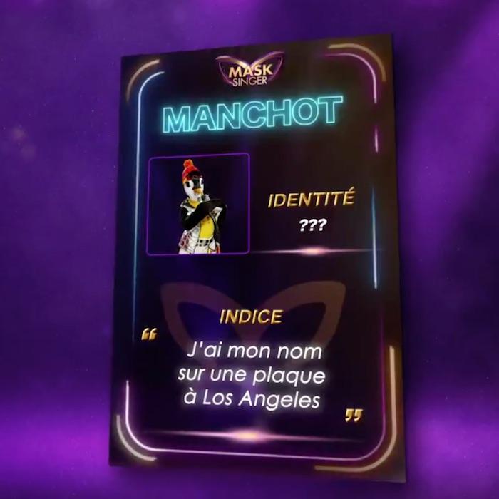 « Mask Singer » : qui se cache derrière le Manchot ?
