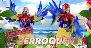 « Mask Singer 2 » : les frères  Bogdanoff se cachent-ils derrière les perroquets ?